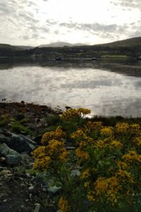 waiting for the ferry at Uig