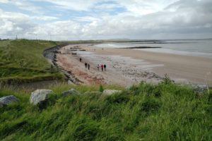 the first beach walk