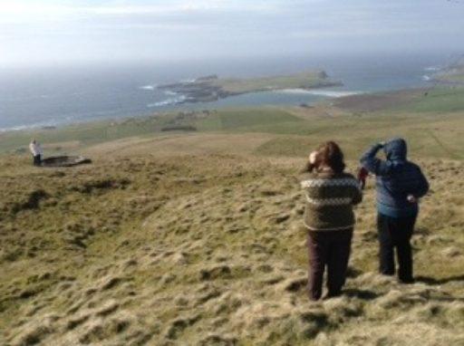 Wild about Shetland
