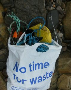 no time for waste (photograph by Marita Lueck)